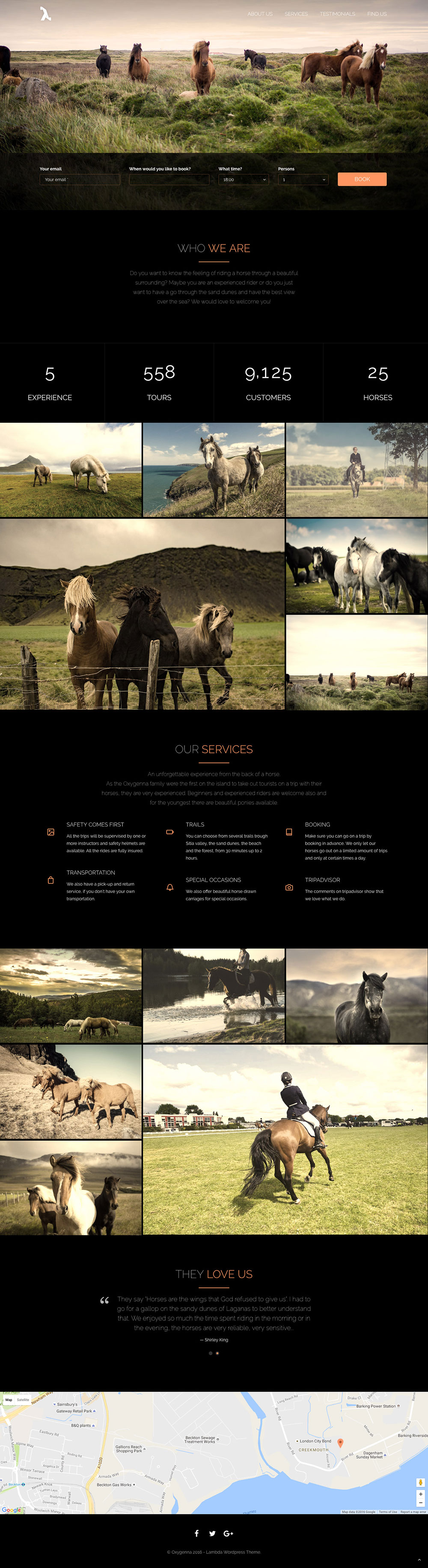 Horse Riding for WordPress