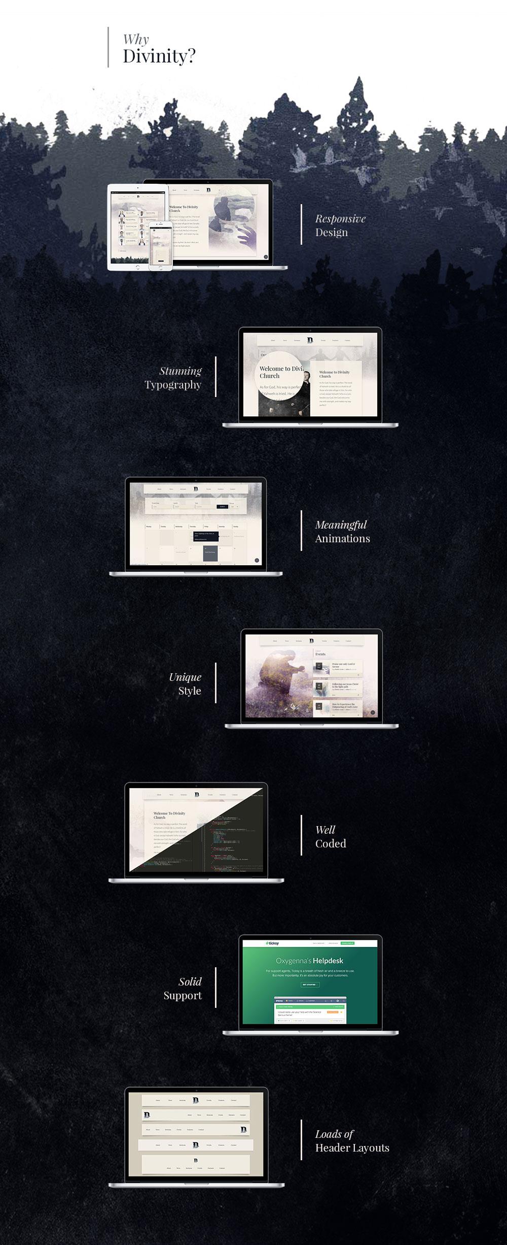 Divinity for WordPress